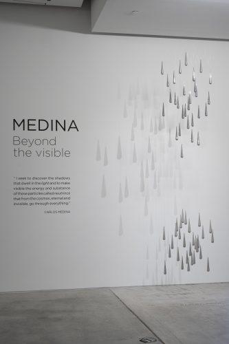 Sala Beyond The Visible Carlos Medina @rafaelguillen 0618